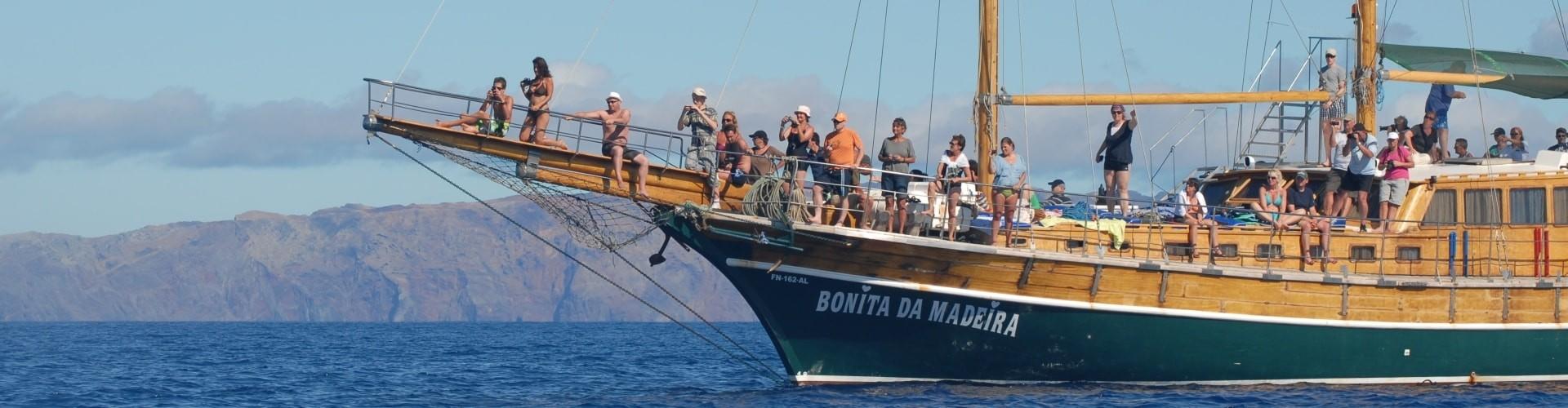 Passeios de Barco na Ilha da Madeira
