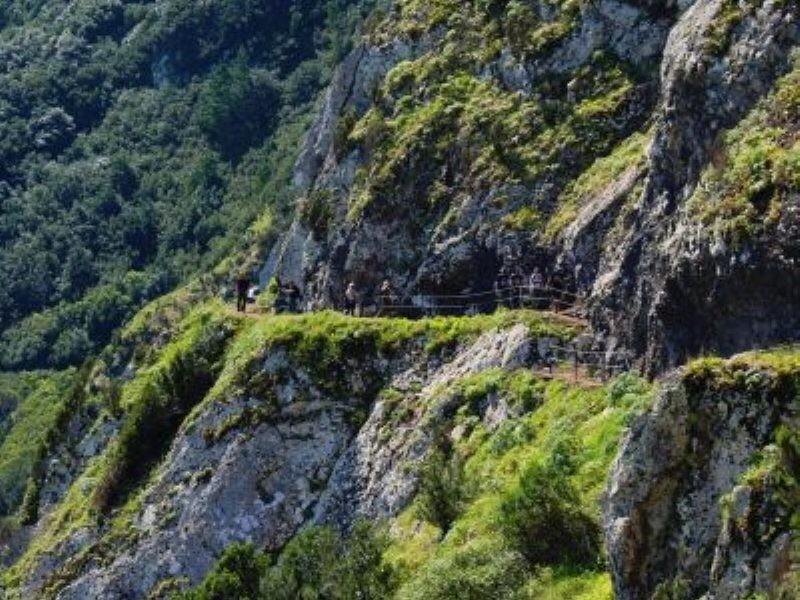 Madeira Island's complete tourism destination guide!