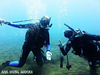 Try Scuba Diving in Caniçal Madeira
