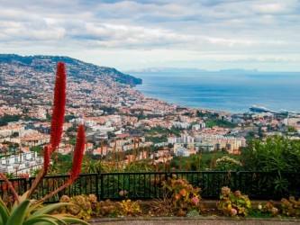 A Glance over Camara de Lobos and Funchal Tour