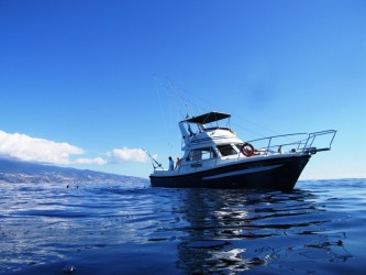 Madeira Big Game Fishing on Balancal – Full Day