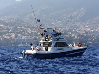 Big Game Fishing on Balancal in Madeira Island