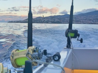 Big Game Fishing in Madeira Private Trip