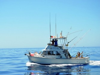 Big Game Madeira Sportfishing Shared Boat