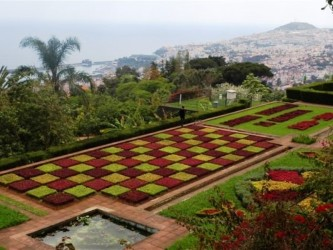Private Garden Tour in Madeira Island Half Day