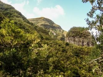 Chão dos Louros Trail Tour Fácil