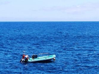 Scuba Diving Courses in Madeira Island