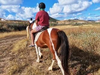 Horse Riding in Porto Santo on the Dunes