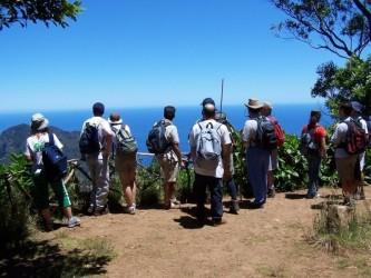 Levada Walk from Ribeiro Frio to Portela in Madeira