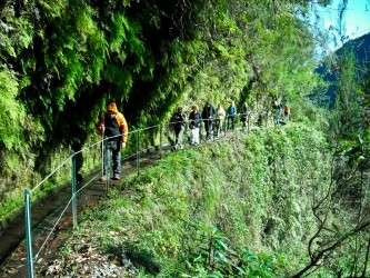 Levada do Rei Walk in Madeira Island