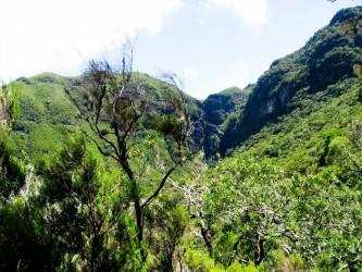 Rabaçal 25 Fontes Levada Walk, Madeira