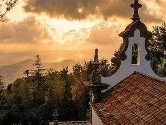 Monte & Botanical Gardens Tour in Madeira
