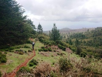 Mountain Bike Ride in Madeira