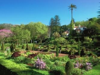 Palheiro Gardens Madeira Island