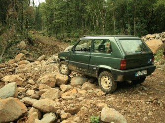 Pico do Areeiro & Laurissilva Full Day private tour 4x4 from Funchal