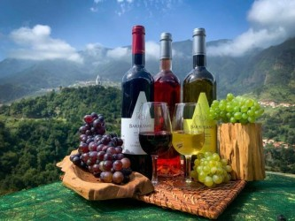 Skywalk & Professional Wine Experience in Madeira