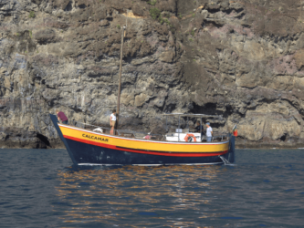 Passeio de barco à São Lourenço saindo de Machico