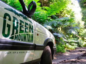 Sunrise & Reforest Madeira Nature Jeep Tour