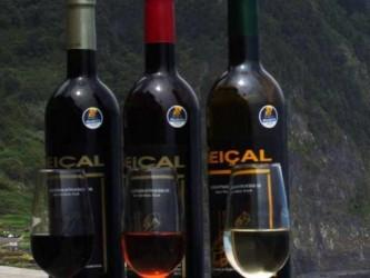 Wine & Poncha Tour in Madeira