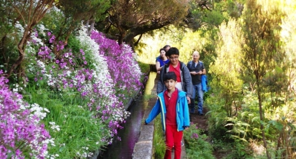 Levada Walks in Madeira Island min