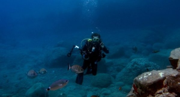 scuba diving in madeira island min